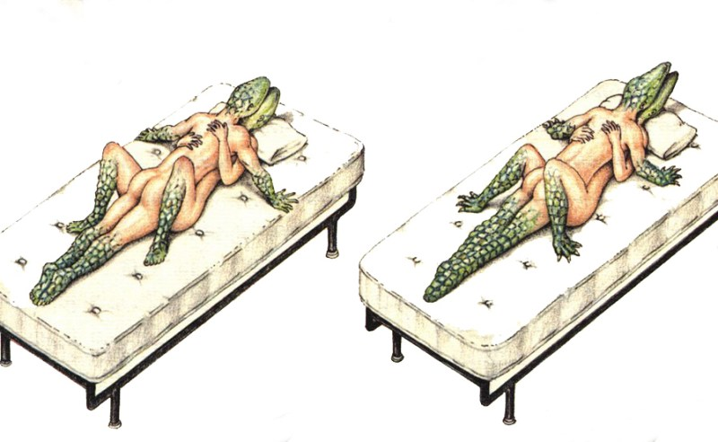 Codex Seraphinianus: the most peculiar book in the world