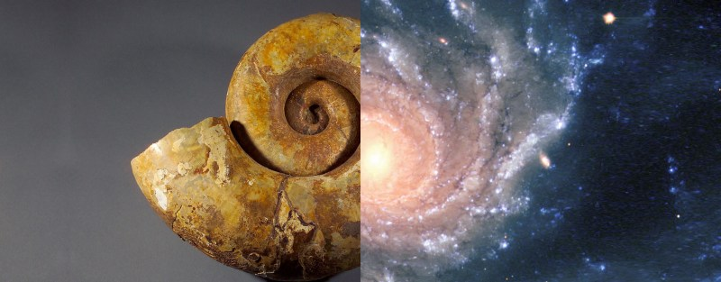 spirale-universelle