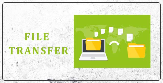 File Transfer and Compatibility