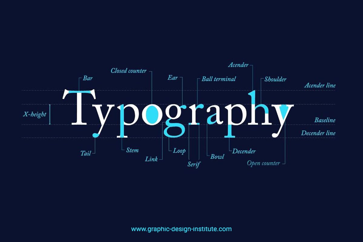 Anatomy of Typography for Designers