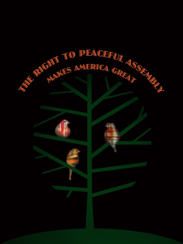 The right to peaceful assembly by Kevin McGeen
