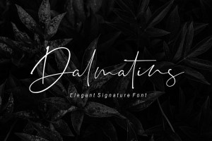 Graphic Ghost - Dalmatins Signature Font