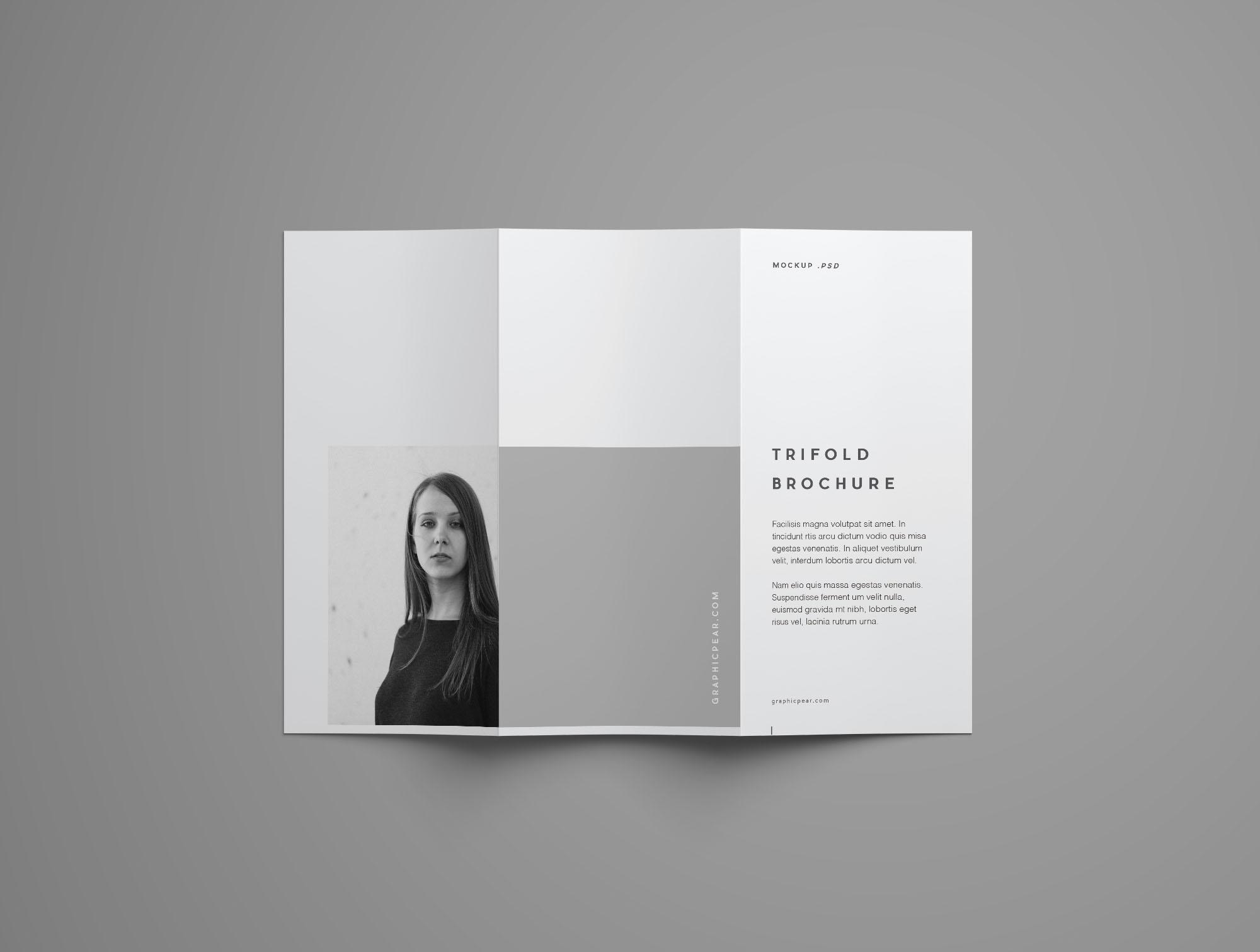 Free Advanced Trifold Brochure Mockup  7 Angles