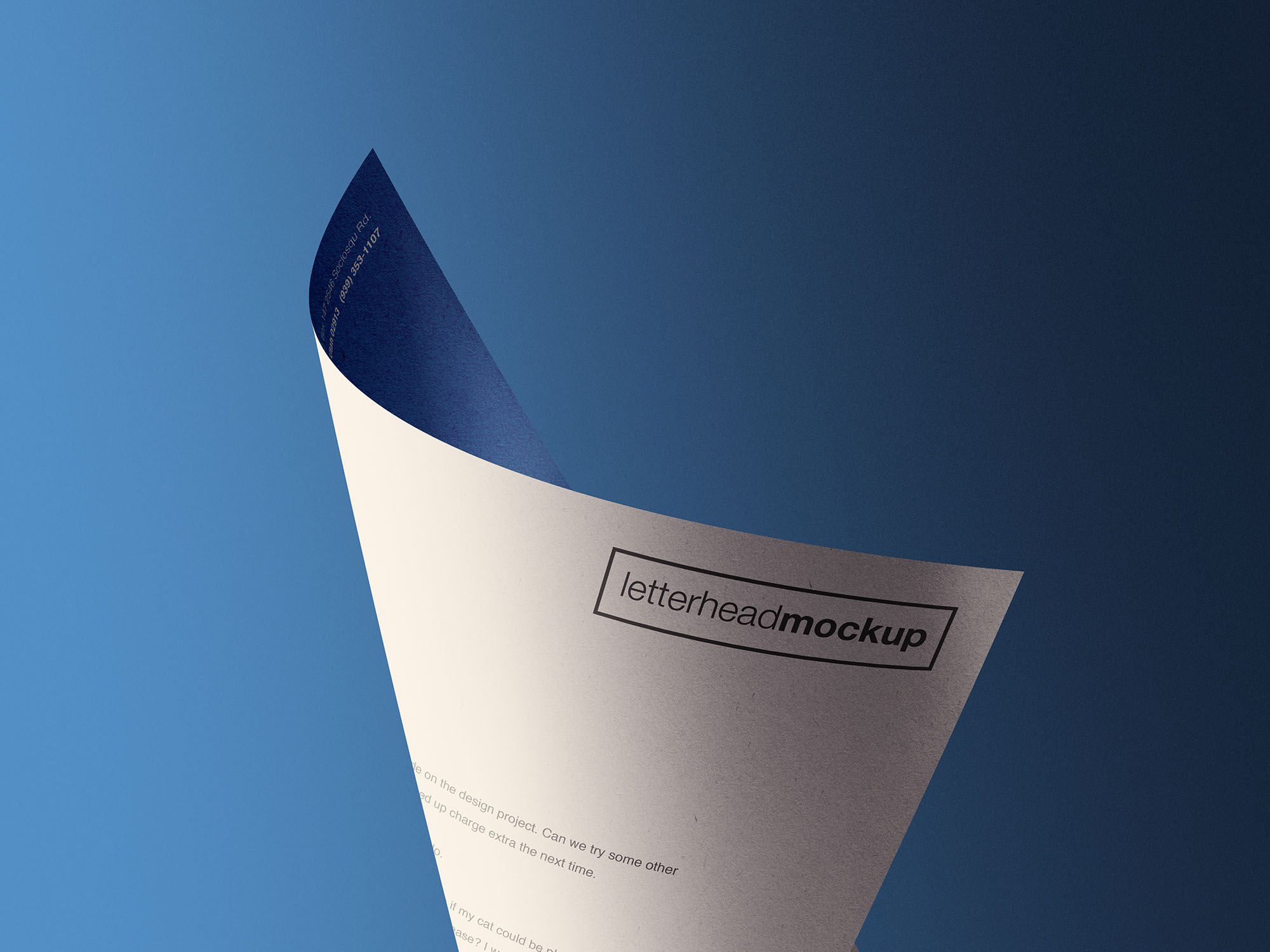 Curled A4 Letterhead Paper Mockup