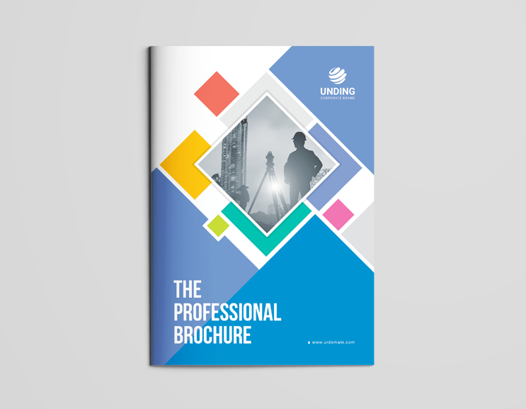 Professional Brochure Template from i0.wp.com