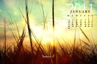 Wallpaper calendar: January 2011