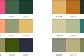 14 wonderful color palettes (PSD)