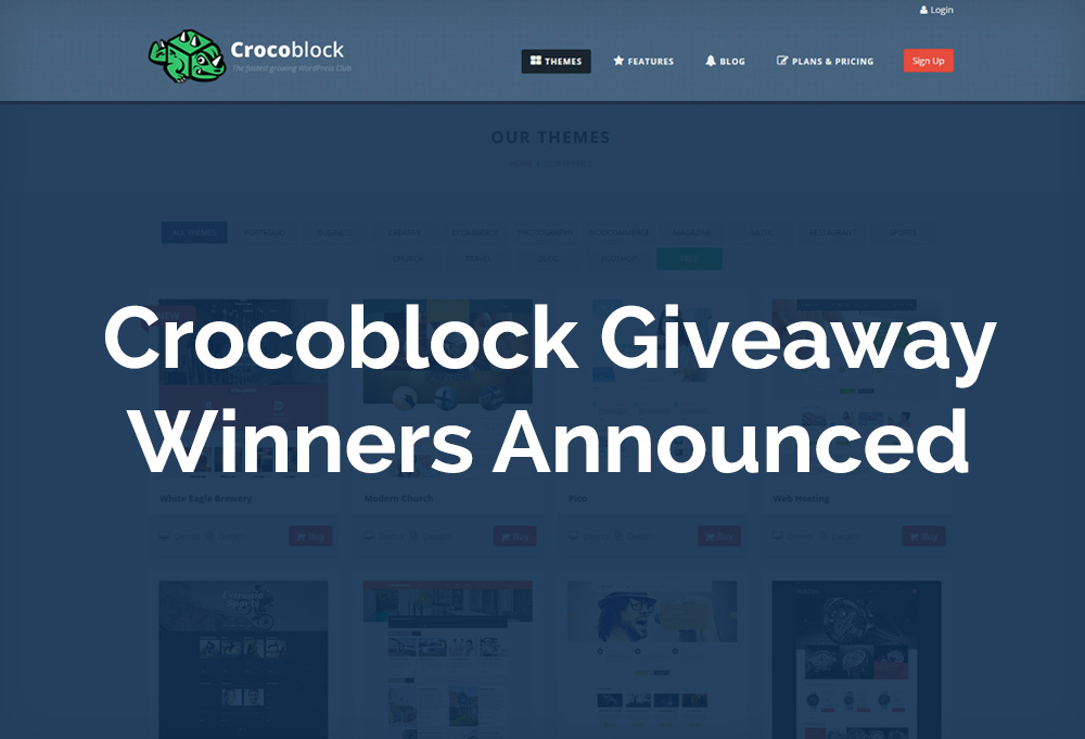 WP-themes-Giveaway-winners