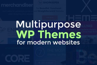Modern Multipurpose WP Themes