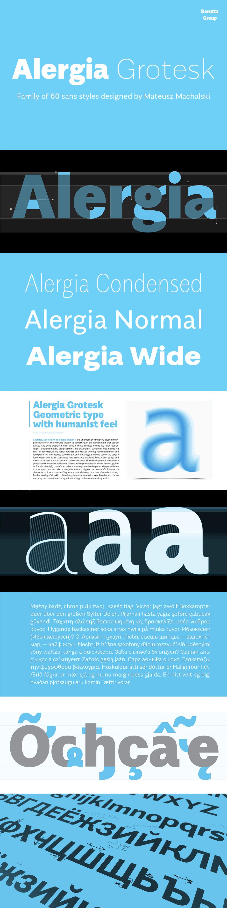 Definitive Fonts Bundle Alergia Grotesk