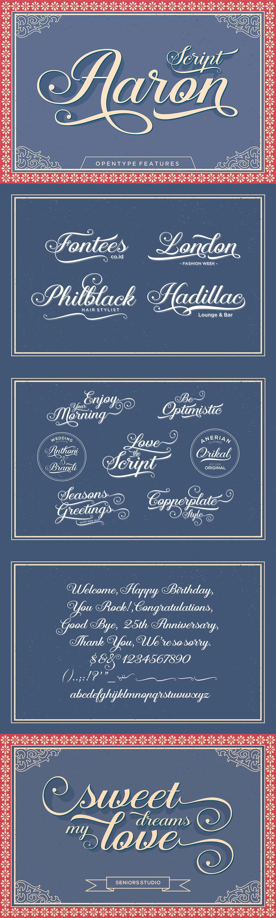Definitive Fonts Bundle Aaron Script