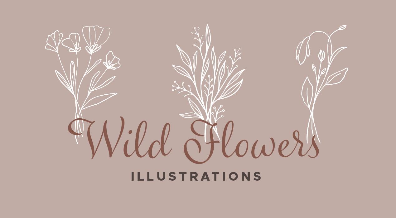 Wildflower Vector Illustrations