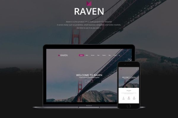 reven-multipurpose-psd-template