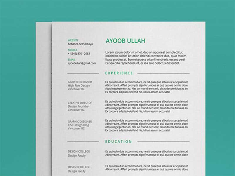 resume-template-psd-free-22