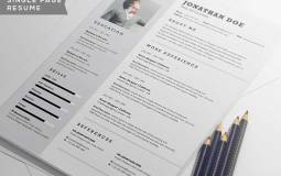 professional-resume-2