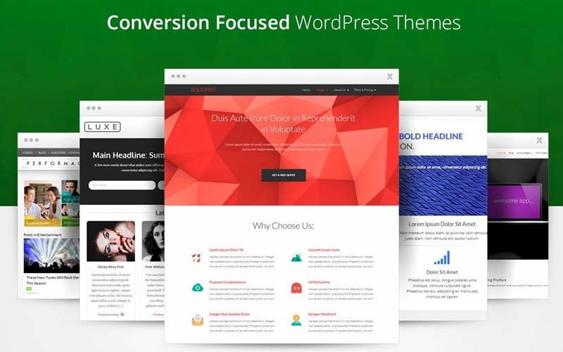 thrive-wordpress-theme