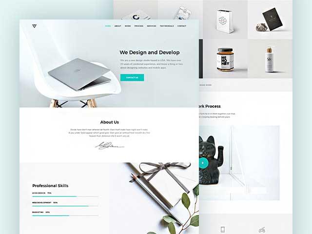 Piroll-A design template for agency personal portfolio