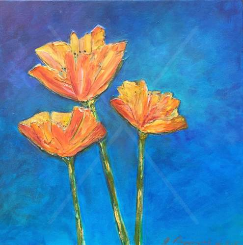 "Just Poppies - 20"" x 20"" - $875"