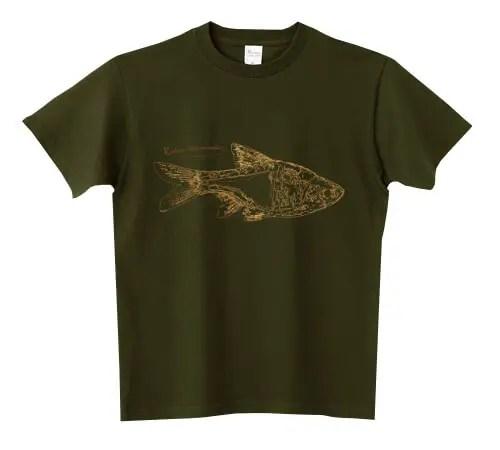 ラスボラ・ヘテロモルファ Tシャツ