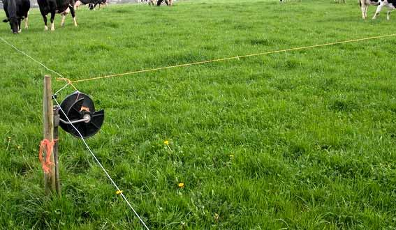 Fence Wiring Diagram Home Electric Fence Wiring Diagram Electric Fence
