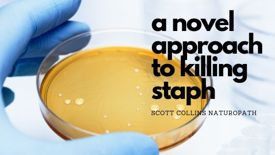 A novel approach to treating Staphylococcus infections