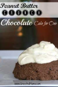 gluten free, grain free, one serving chocolate cake, healthy snacks, healthy chocolate cake, sugar free snack cake