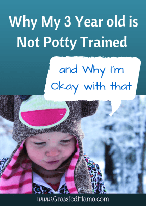 potty training, potty training regression, preschooler not potty trained,