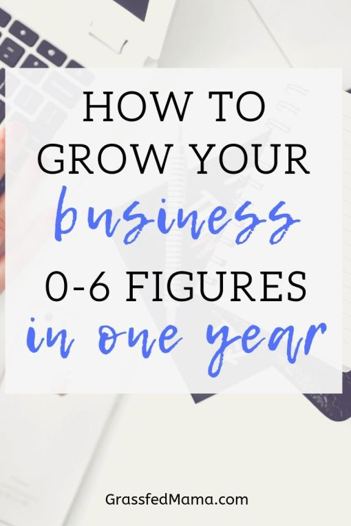 How to Grow Your Business 0-6 figures in one year