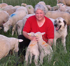 Janet with Lambs