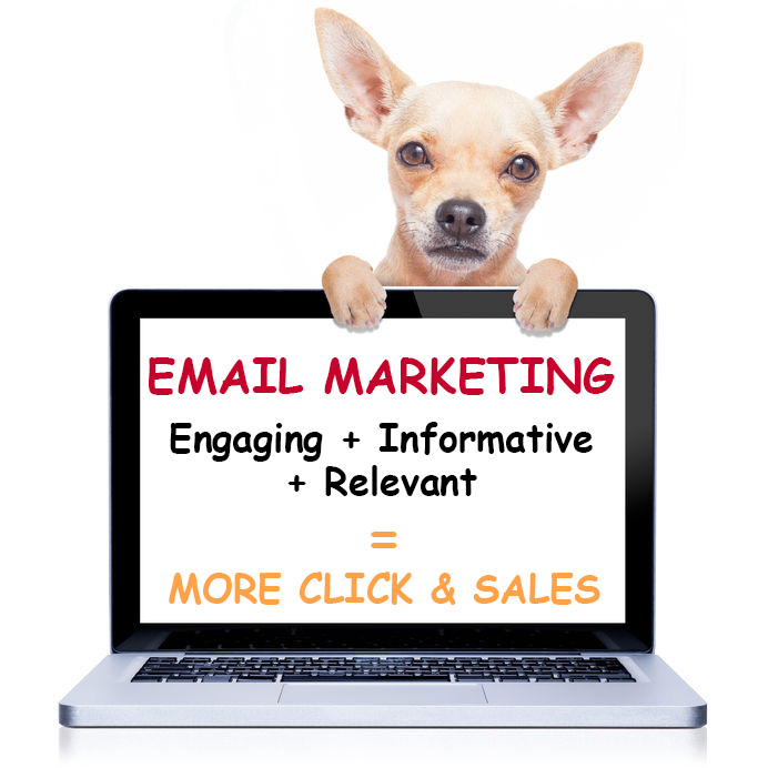 Email Marketing Advice