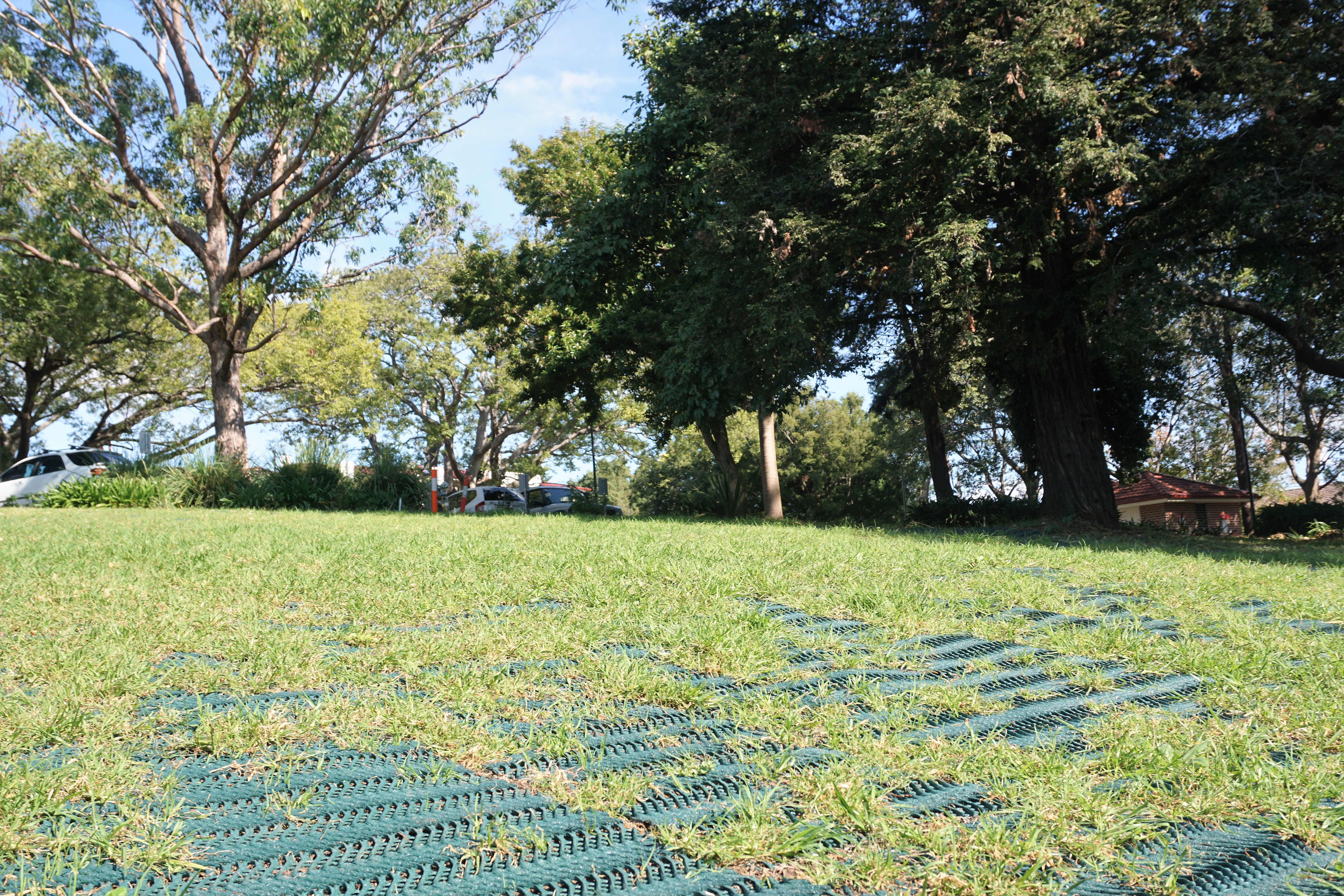 Grass Protecta  All Stake Supply  Grass Protection Mesh