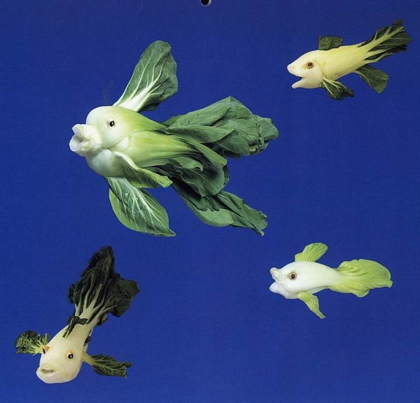 vissen zijn geen groenten
