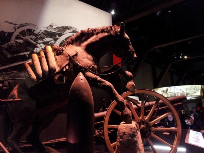 opgezet paard, tentoonstelling Flanders Fields Museum, Ieper exhibitie 2012
