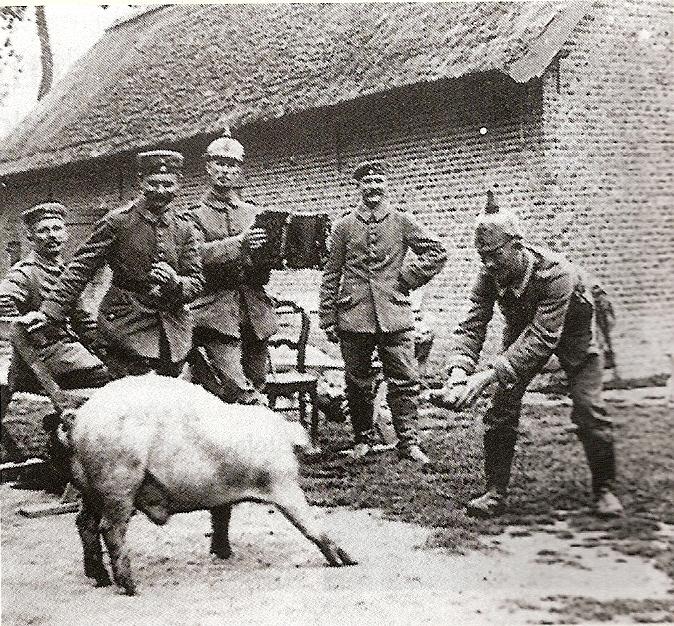 varken, Duitse soldaten, WOI