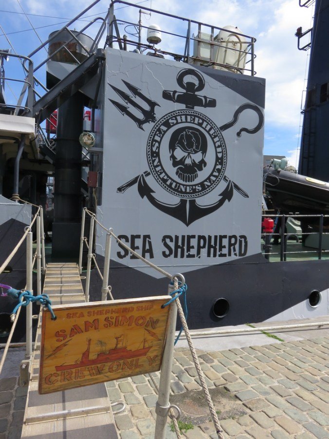 Sea Shepherd, Sam Simon in Antwerpen