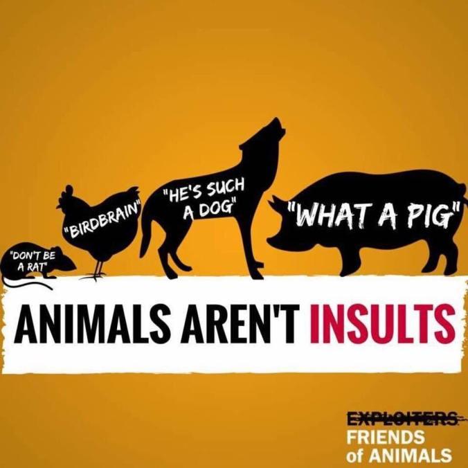 Gele achtergrond. Witte banner in het midden met zwarte tekst: Animals aren't insults. Daarboven staan zwarte silhouetten van dieren, met daarin tekst. Respectievelijk: Rat (don't be a rat) Kip (birdbrain), hond (he's such a dog), varken (what a pig).