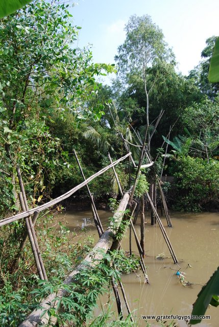 Would you cross the monkey bridge?