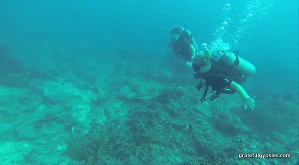 Gili Air Diving