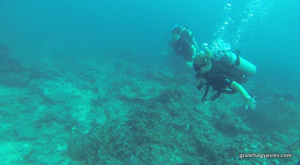 Gili Air Diving