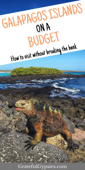 Visiting Galapagos does not have to break the bank. It's possible to travel to Galapgos on a budget. This post includes our itinerary plus how much we spent on all our activities.