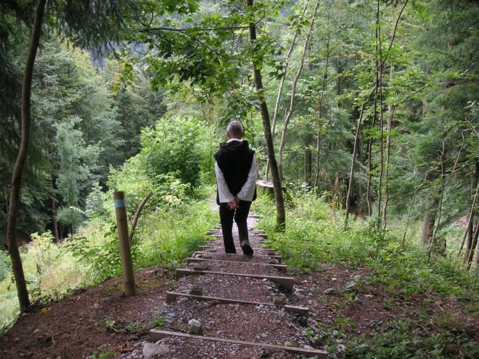 David Steindl-Rast walking