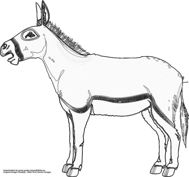 Esel - Gratis Ausmalbild