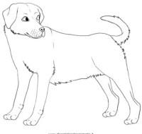 Cani da colorare | Disegni Gratis