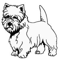 Disegni Da Colorare Di Cani Boxer | Timazighin