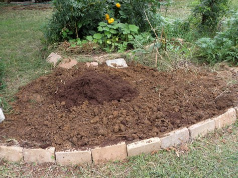 Preparing to amend clay soil with peat moss.