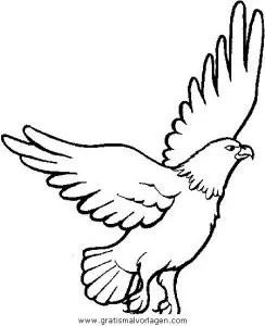 Adler 02 gratis Malvorlage in Adler Tiere - ausmalen