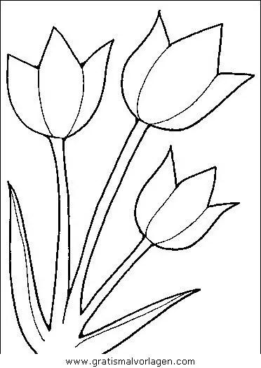 blumen 279 gratis Malvorlage in Blumen Natur  ausmalen