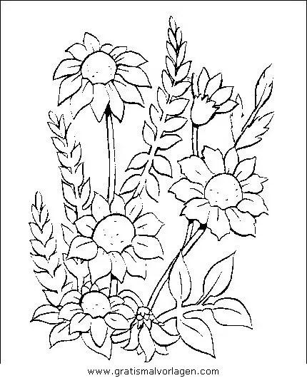 Blumen 290 gratis Malvorlage in Blumen Natur - ausmalen