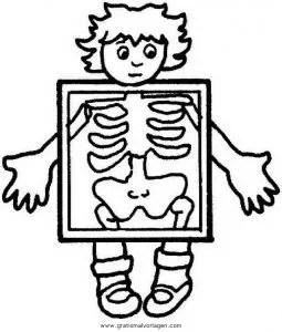 Malvorlage Körper
