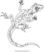 eidechse 7 gratis Malvorlage in Schlangen, Tiere   ausmalen